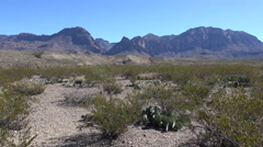 Texas Big Bend desert floor and mountains Stock Footage