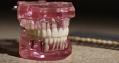 Model Teeth Slow Pull Stock Footage