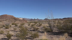 Texas Big Bend Mule Ears zoom in past ocotillo Stock Footage