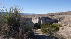 Texas Big Bend Tuff Canyon with yucca Stock Footage