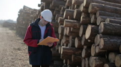 Worker in white helmet is on the harvesting of wood. Stock Footage