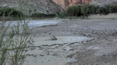 Texas Big Bend tilts up from birds tracks in mud Stock Footage