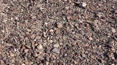 Texas Big Bend zooms on desert floor pebbles Stock Footage