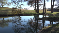 Texas Hill Country stream with reflections Stock Footage
