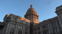 Texas Austin Capitol view of dome with birds Stock Footage