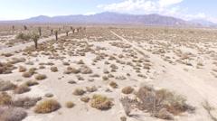 Aerial South California Desert Stock Footage