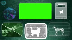 Cat - Bone scanning  - Animal Monitor  - World search - green Stock Footage