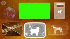 Cat - Bone scanning  - Animal Monitor  - World search - orange Stock Footage