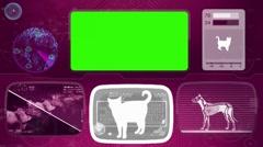 Cat - Bone scanning  - Animal Monitor  - World search - purple 02 Stock Footage