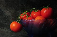 Still life closeup of bright red tomatoes - stock photo