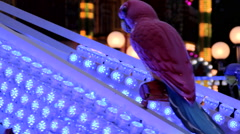 Plastic parrot rotating Fun Fair at night flickering lights Stock Footage