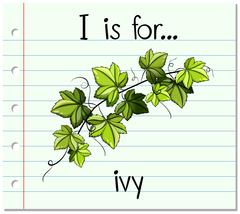 Flashcard alphabet I is for ivy - stock illustration