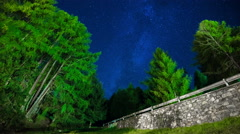 Milkyway over pine trees timelapse - stock footage