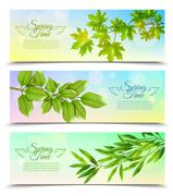 Horizontal Banners Set With Green Branches - stock illustration