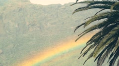 Rainbow in the mountains with fog and palm trees. - stock footage