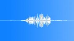 Winter Wren Singing - sound effect