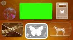 Butterfly - Bone scanning  - Animal Monitor  - World search - orange Stock Footage