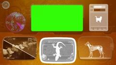 Lizard - Bone scanning  - Animal Monitor  - World search - orange - stock footage