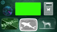 shark - Bone scanning  - Animal Monitor  - World search - green 03 - stock footage