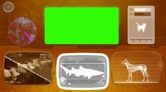 shark - Bone scanning  - Animal Monitor  - World search - orange 02 - stock footage