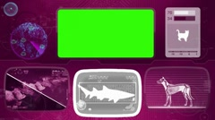 shark - Bone scanning  - Animal Monitor  - World search - purple 02 - stock footage