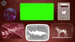 Shark - Bone scanning  - Animal Monitor  - World search - red 02 Stock Footage