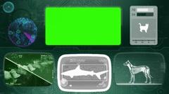 Squaliformes shark - Bone scanning  - Animal Monitor  - World search - green. Stock Footage