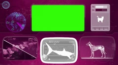 Tiger shark - Bone scanning  - Animal Monitor  - World search - purple - stock footage