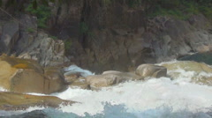 Yang Bay waterfall. Vietnam. sunny day. waterfall rapids. water runs down. Stock Footage
