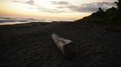 Costa Rican beach sunset with drift wood Stock Footage