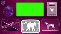 Ape - baboon - monkey - Bone scanning  - Animal Monitor  - World search - pur Stock Footage