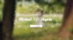 Wedding Titles Pack Stock After Effects