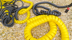 Yellow and black springs on the hay Stock Footage