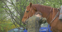 Polish Flag Day in Opole Woman Calms Horse Preparation Before Performance Horse Stock Footage