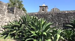 Texas Goliad Presidio La Bahia maguey by wall Stock Footage