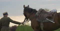 Flag Day in Opole Military Man Lead War Horse Away Riders' Parade Reenactment Stock Footage