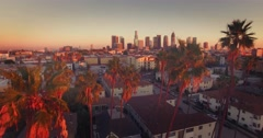 Aerial view downtown Los Angeles skyline revealing through row palm trees 4K UHD Arkistovideo