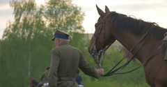 High Grey-Haired Man Stands Near to a Brown Horse Stock Footage