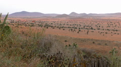 Red semi desert Morocco scenery Stock Footage