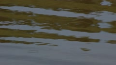 Water surface in a small reservoir. Smooth waves. - stock footage