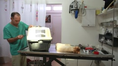 Cat's cage at veterinary - stock footage
