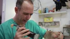 Veterinar doctor at veterinary Stock Footage