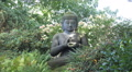 Big sitting Buddha statue in sunny nature environment HD Footage