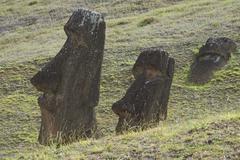 Three partially buried Moai statues at the extinct volcano Rano Raraku - stock photo
