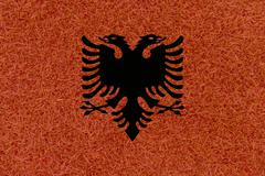 Football field textured by Albania national flag on euro 2016 Stock Photos