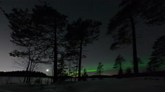 Auroral arc in the forest Stock Footage