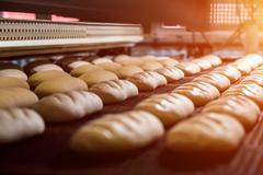 Manufacture of bread. Stock Photos