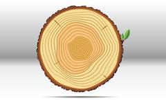 Tree growth rings wood Piirros