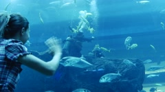 Visitor to the aquarium waving to the divers - stock footage