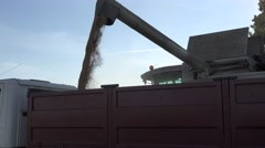 Cereal corn load truck Stock Footage